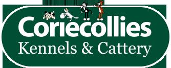 Coriecollies Kennels & Cattery